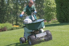 Lawn Care - Lawn applications